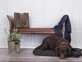 hund-på-doggyshop-hundepude-hundemadras-medium-sort