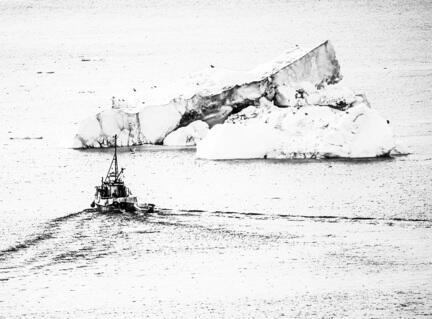 fotomester grønland ilulissat