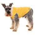 ny hvalp, køresele til hund, vintertøj til hunde, sele til hund i bil