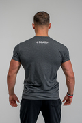 Stony Sportswear, Deadlift, T-Shirts Logo Grå  3