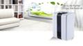 rens-luften-derhjemme-på-kontoret-til-fitness-med-en-ionisk-luftrenser