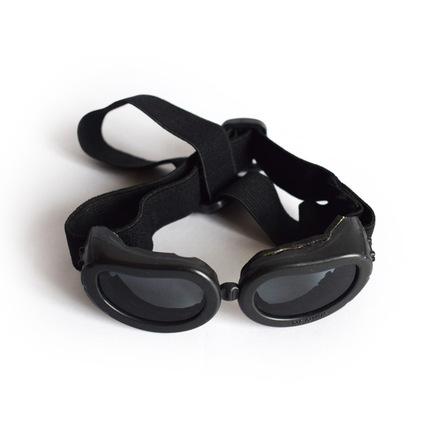 hundesolbriller, solbriller til en hund