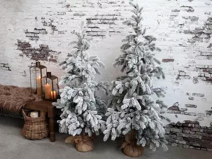 Chic Antique, Grantræ med sne, 150 cm.