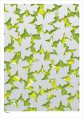 leaf forest leaves colour danish Poster plakat ©Birger Bromann www.artprintandmore.dk