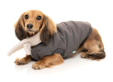 flyverdragt hund, fleece hund, hundesweater uld, regntøj til hunde