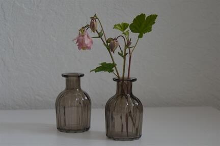 glasvase, apothekerglas