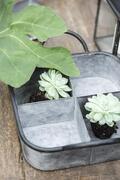 Bakke kvadratisk med 4 rum Urban Garden fra Ib Laursen