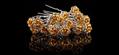Hairpins fra SPANEWS guld roser 6cm