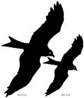 Sportsign rovfugl scare off silhouet vindue window sticker silhouet
