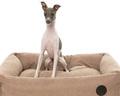 hundekurv, hundeseng, kurv til mellem hund, hund blå tunge, blandingshunde til salg, køb bomuldshund