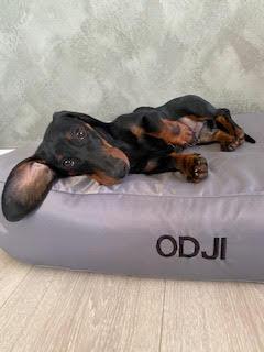 Doggyshop-broderi-på-hundeseng-sort