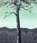 maleri grøn hvid 50x60cm