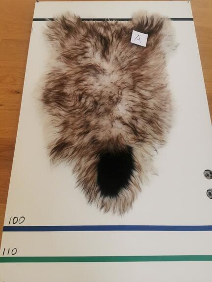 Billig 2 sort lammeskind fåreskind nordisk