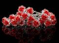 Hårnåle6cm-2pk-røderoser